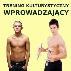 wprowadzajacy-230-230